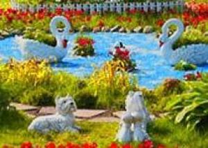 Международный фестиваль флористики и ландшафтного дизайна пройдет в Южно-Сахалинске