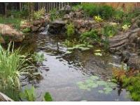 Водоемы в частных садах и парках