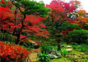 Японский образец - сады мира