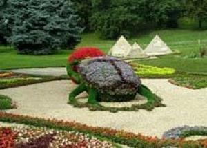 Цветочные скульптуры украсят Краснодар с приходом тепла