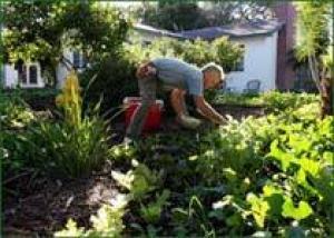 Американский садовод дает рецепт: ландшафтный дизайн на ужин