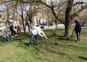 В администрации Южно-Сахалинска обсудили концепцию озеленения города