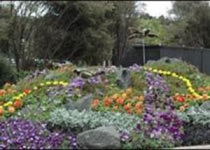 Любителей тропических цветов ждут в Нью-Йорке