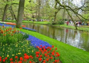 Праздник цветов и успех туризма в парке Кёкенхоф