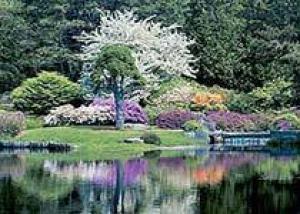 В столице пройдет Фестиваль цветников и ландшафтной архитектуры