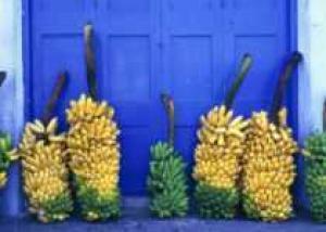 """Британский ученый создал """"дрова"""" из банановой кожуры"""