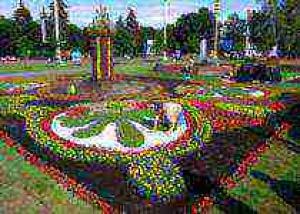 III Международная выставка цветочного оформления и ландшафтного дизайна 2008