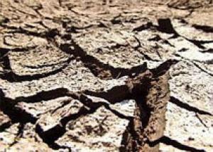 Ближайшие пять лет на Земле будут очень жаркими