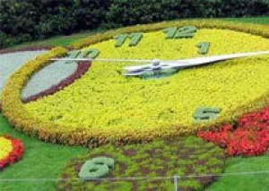 Конкурс на лучшее цветочно-декоративное оформление городской застройки