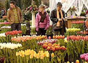 В Иркутске открывается выставка-ярмарка `Огород. Сад. Загородный дом`