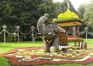 Цветочный август в столице Сибири: открылась самая красивая выставка лета
