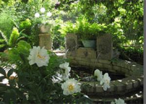 В одном из садов под Кировом есть свой Эрмитаж