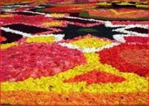 В Израиле соткали гигантский ковер из цветов