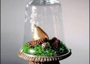 Как создать сад в `бутылке`?