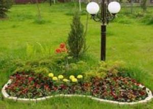Ишимские цветоводы порадуют горожан особенным оформлением клумб