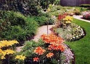 Дорожки, террасы и пандусы в саду – посадка в цветах