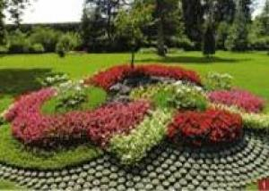 Конкурс на лучшее цветочное оформления объявлен в г. Нижний Тагил