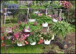 Цветочно-овощная сказка оживает во Флориде