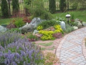 В моде гравийные сады и разноцветные хвойники