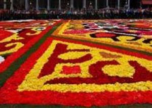 Праздник бегоний в Брюсселе пройдет с 13 - 15 августа
