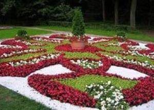 Челябинск к выставке цветов украсят новыми клумбами