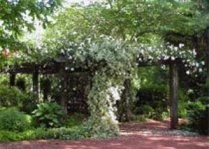 Как необычно украсить садовую беседку