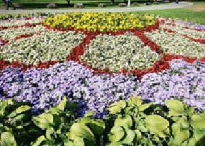 На ВВЦ работает V международная выставка цветочного оформления и ландшафтного дизайна