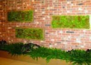ООО «Рокада»: при оформлении входной зоны бизнес центра «Маркус» в Санкт-Петербурге использовали технологии вертикального озеленения