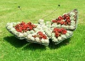 Клумбы - наиболее распространенная форма цветников