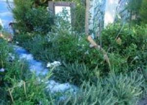 Русский сад Сен-Тропе