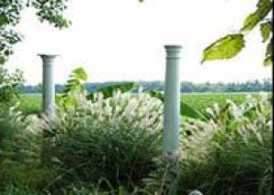 Как украсить сад при помощи... мусора?