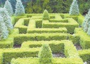 В сад – по спирали