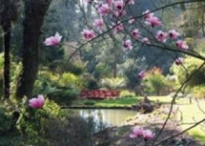Субтропические Сады Абботсбери