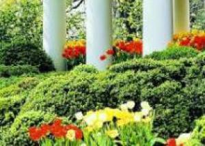 Американцы увидят историю садов Белого Дома