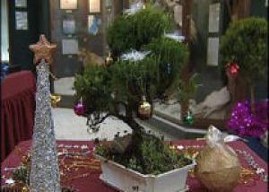 В Иркутске открылась выставка «В лесу родилась елочка»