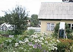 В Барнауле открывается выставка `Сады под открытым небом`