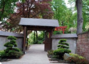 Японский сад Кайзерслаутерн