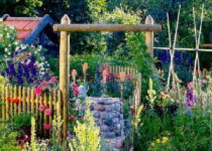 Травы в вашем саду