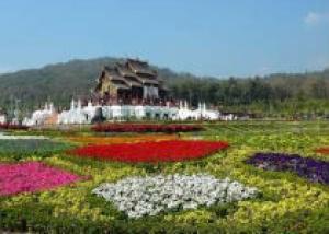 В Таиланде состоится выставка растений