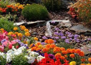 Зачем в саду вода
