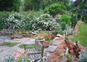 «Райский» сад на шести сотках
