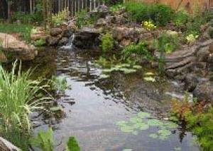 Водные элементы дизайна