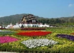 В Таиланде пройдет международная выставка флористики
