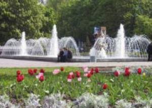Озеленением города займутся в Днепропетровске
