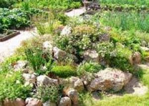 Во львовском парке обустроили альпийскую горку