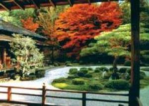 В Ботаническом саду Санкт-Петербурга в мае появится японский уголок