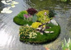 Плавающий островок в пруду