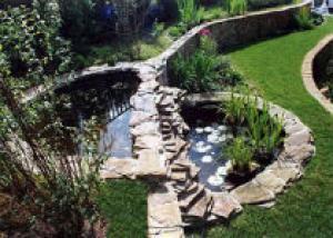 Как лучше расположить водоем в саду?