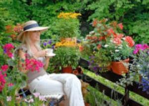 Какие растения подходят для балконов