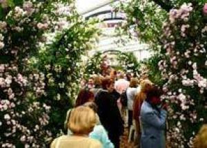 Челси 2011: Цветоводы собирают `золотой` урожай